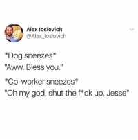 """Aww, God, and Memes: Alex losiovich  @Alex_losiovich  *Dog sneezes*  """"Aww. Bless you""""  *Co-worker sneezes*  """"Oh my god, shut the f*ck up, Jesse"""" God Jesse please not right now. @x__social_butterfly__x only has hilarious posts. Tw: alex_losiovich"""