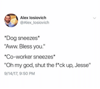 """Aww, God, and Oh My God: Alex losiovich  @Alex_losiovich  *Dog sneezes*  """"Aww. Bless you.""""  *Co-worker sneezes*  """"Oh my god, shut the f*ck up, Jesse""""  9/14/17, 9:50 PM @aiosiovich is hilarious"""