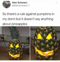 Fire, SpongeBob, and Target: Alex Schwarz  @alexschwarz _1  So there's a rule against pumpkins in  my dorm but it doesn't say anything  about pineapples validnoodle:WHY DID YOU SET ME ON FIRE SPONGEBOB? WHY DIDNT YOU JUST WRITE YOUR ESSAY
