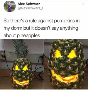 validnoodle: WHY DID YOU SET ME ON FIRE SPONGEBOB? WHY DIDNT YOU JUST WRITE YOUR ESSAY: Alex Schwarz  @alexschwarz _1  So there's a rule against pumpkins in  my dorm but it doesn't say anything  about pineapples validnoodle: WHY DID YOU SET ME ON FIRE SPONGEBOB? WHY DIDNT YOU JUST WRITE YOUR ESSAY