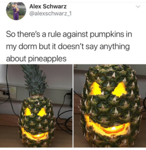 Dank, Memes, and Target: Alex Schwarz  @alexschwarz 1  So there's a rule against pumpkins in  my dorm but it doesn't say anything  about pineapples Malicious Compliance by CaptainBundiePants MORE MEMES