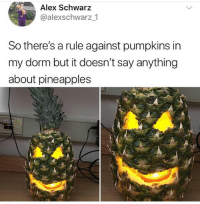 Memes, Savage, and Say Anything...: Alex Schwarz  @alexschwarz1  So there's a rule against pumpkins in  my dorm but it doesn't say anything  about pineapples So savage