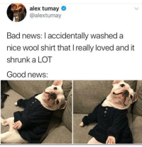 Bad, News, and Good: alex tumay  @alextumay  Bad news: I accidentally washed a  nice wool shirt that I really loved and it  shrunk a LOT  Good news: Awww @alextumay