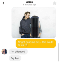 It was worth a try.: Alexa  5 minutes ago  ama  Alright hear me out... this could  be us  I'm offended  Sry bye It was worth a try.