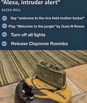 "I need this in my life: ""Alexa, intruder alert""  ALEXA WILL  Say ""welcome to the rice field mother fucker""  Play ""Welcome to the jungle"" by Guns N Roses  Turn off all lights  Release Claymore Roomba  FRONT  ENERY  IRobol I need this in my life"