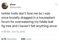 fiddle: alexa  @playnikes  twitter trolls don't faze me bc i was  once brutally dragged in a houseplant  forum for overwatering my fiddle leaf  fig tree and i haven't felt anything since  4:46 AM Oct 10, 2018  8.7K Retweets  59K Likes