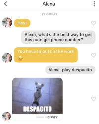 Cute, Phone, and Work: Alexa  yesterday  Hey!  Alexa, what's the best way to get  this cute girl phone number?  You have to put on the work  Alexa, play despacito  DESPACITO  POWERED BY GIPHY Alexa is here