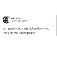 Dogs, Funny, and Memes: alexander  @whosalexander  do regular dogs see police dogs and  think oh shit its the police Funny Memes. Updated Daily! ⇢ FunnyJoke.tumblr.com 😀
