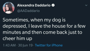 awesomacious:  Wholesome Alex <3: Alexandra Daddario  @AADaddario  Sometimes, when my dog is  depressed, I leave the house for a few  minutes and then come back just to  cheer him up  1:43 AM 30Jun 19 Twitter for iPhone awesomacious:  Wholesome Alex <3
