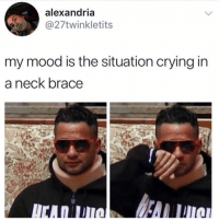 Crying, Lmao, and Mood: alexandria  27twinkletits  my mood is the situation crying in  a neck brace Lmao this is hysterical and also heartbreaking