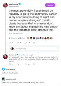 Thank you to everyone in the comments calling me a faerie.: alexis nedd  alexisthenedd  Following  the most potentially illegal thing i do  regularly is go to the community garden  in my apartment building at night and  prune complete strangers' tomato  plants because their city asses don't  and the tomatoes don't deserve that  0:58 AM-9 Aug 2018  85 Retweets 1,179 Likes 0338) 9  know shit about maintaining new growtlh  Tweet your reply  alexis nedd Galexisthenedd-Aug 9  very occasionally i take a single basil leaf from the most successful plant in the  garden just to sniff on my way back up the stairs to my apartment, as a form of  payment  great-tweets  textbook chaotic good  alexisthenedd  Thank you to everyone in the comments calling me a faerie Thank you to everyone in the comments calling me a faerie.