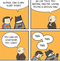 """Batman, Superman, and Batman vs Superman: ALFRED, CAN CLARK  SLEEP OVER?  AS I'VE TOLD YOU  BEFORE, MASTER WAYNE,  YOU'RE A GROWN MAN.  YAS  YOU CAN DO  WHATEVER  YOU WANT.  YAS  YAS <p>Why have Batman vs Superman when you can have Batman and Superman? via /r/wholesomememes <a href=""""http://ift.tt/2i3DPb6"""">http://ift.tt/2i3DPb6</a></p>"""