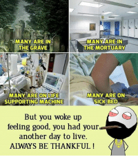 Ali, Be Like, and Life: ali  MANY ARE IN  THE GRAVE  MANY ARE IN  THE MORTUARY  MANY ARE ON LIFE  SUPPORTING MACHINE  MANY ARE ON  SICK BED  But you woke up  feeling good. you had your  another day to live.  ALWAYS BE THANKFUL! Twitter: BLB247 Snapchat : BELIKEBRO.COM belikebro sarcasm meme Follow @be.like.bro