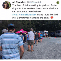 Ali, Dogs, and Memes: Ali Standish @AliStandish  The line of folks waiting to pick up foster  dogs for the weekend so coastal shelters  can evacuate here before  #HurricanceFlorence. Many more behind  me. Sometimes humans are okay. win @tanksgoodnews