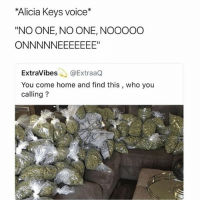 """Best, Home, and Voice: Alicia Keys voice*  """"NO ONE, NO ONE, NOOOOO  ExtraVibes@ExtraaQ  You come home and find this , who you  calling? Following @high was the best decision I've made in weeks"""