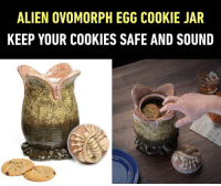 9gag, Cookies, and Dank: ALIEN OVOMORPH EGG COOKIE JAR  KEEP YOUR COOKIES SAFE AND SOUND I dare you to touch my cookies. By ThinkGeek https://9gag.com/gag/amYybvX?ref=fbpic