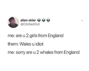 i blew air through my nose by ItsSrikarOMG MORE MEMES: alien skier  @ClichedOut  me: are u 2 girls from England  them: Wales u idiot  me: sorry are u 2 whales from England i blew air through my nose by ItsSrikarOMG MORE MEMES