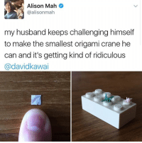 Memes, Origami, and What Is: Alison Mah  alisonmah  my husband keeps challenging himself  to make the smallest origami crane he  can and it's getting kind of ridiculous  Cadavidkawai What is this, an origami crane for ants? Actually yes, yes it is. 🥗