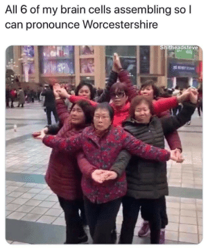 meirl: All 6 of my brain cells assembling so l  can pronounce Worcestershire  Shitheadsteve meirl