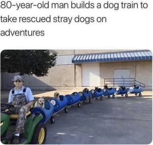 All aboard the train: All aboard the train