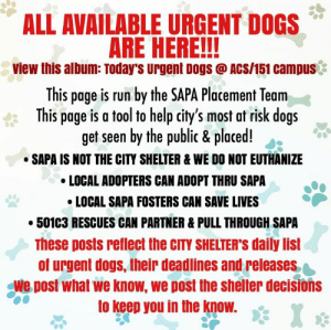 Dogs, Memes, and Run: ALL AVAILABLE URGENT DOGS  ARE HERE!!  view this album: Today's Urgent DogS @ ACS/151 Campus.  This page is run by the SAPA Placement Tearm  This page is a tool to help city's most at risk dogs  get seen by the public & placed!.  SAPA IS NOT THE CITY SHELTER& WE DO NOT EUTHANIZE  LOCAL ADOPTERS CAN ADOPT THRU SAPA  LOCAL SAPA FOSTERS CAN SAVE LIVES  50103 RESCUES CAN PARTNER & PULL THROUGH SAPA  These posts reflect the CITY SHELTER'S daily list  of urgent dogs, their deadlines and releases  We post what we know, we post the shelter decisions  to keep you in the know. ros