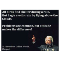 ✒️📜Quote. science math physics thermodynamics calculus mathematics technology structures software statics dynamics fluidmechanics heattransfer matlab cad computer programmer electronics electricity memes funny engineering quotes quote newton Einstein automotiveengineer cool mechanics physics magnet: All birds find shelter during a rain.  But Eagle avoids rain by flying above the  Clouds.  Problems are common, but attitude  makes the difference!  Do Share these Golden Words...  ✒️📜Quote. science math physics thermodynamics calculus mathematics technology structures software statics dynamics fluidmechanics heattransfer matlab cad computer programmer electronics electricity memes funny engineering quotes quote newton Einstein automotiveengineer cool mechanics physics magnet