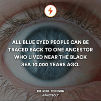 🤔 — Source: http:-www.dailymail.co.uk-sciencetech-article-511473-All-blue-eyed-people-traced-ancestor-lived-10-000-years-ago-near-Black-Sea.html: ALL BLUE EYED PEOPLE CAN BE  TRACED BACK TO ONE ANCESTOR  WHO LIVED NEAR THE BLACK  SEA 10,000 YEARS AGO  THE MORE YOU KNOW  @FACT BOLT 🤔 — Source: http:-www.dailymail.co.uk-sciencetech-article-511473-All-blue-eyed-people-traced-ancestor-lived-10-000-years-ago-near-Black-Sea.html