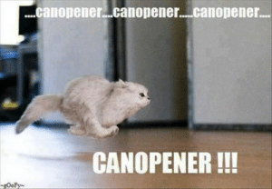 All cat owners know that there's nothing quite like the sound of a tin can opening to make your cat comes running from...anywhere, actually. But can you even blame them?#cats #funnycats #catmemes #funnymemes #funnycatmemes #canopener #food #: All cat owners know that there's nothing quite like the sound of a tin can opening to make your cat comes running from...anywhere, actually. But can you even blame them?#cats #funnycats #catmemes #funnymemes #funnycatmemes #canopener #food #