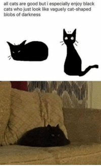 Cats, Funny, and Tumblr: all cats are good but i especially enjoy black  cats who just look like vaguely cat-shaped  blobs of darkness