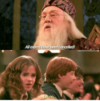 Dumbledore, Hermione, and Memes: All exams have been cancelled!  THELIFEOFAWEASLEYITIG  nO.. - Date: 09-07-17 --- Hermione no --- Q- Dumbledore or McGonagall? --- HarryPotter TheChamberOfSecrets