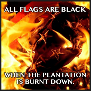WHEN THE REVOLUTION COMES…: ALL FLAGS ARE BLACK  WHEN THE PLANTATION  IS BURNT DOWN. WHEN THE REVOLUTION COMES…