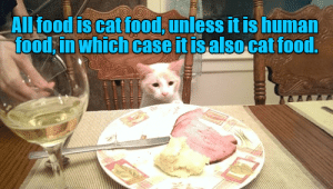 Every week we collect the highest voted cat memes that our users created for ICanHas Cheezburger's LOLCats.#cats #funnycats #catmemes #LOLcats #funnymemes #animalmemes: ALl food is cat food, unless it is human  food in which case it isalso cat food.  TE Every week we collect the highest voted cat memes that our users created for ICanHas Cheezburger's LOLCats.#cats #funnycats #catmemes #LOLcats #funnymemes #animalmemes