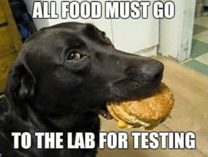 funnyzela:  The Strictest Quality Controlhttp://funnyzela.tumblr.com: ALL FOOD MUST GO  TO THE LAB FOR TESTING funnyzela:  The Strictest Quality Controlhttp://funnyzela.tumblr.com