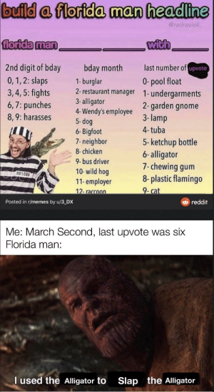 All hail the Florida man by wolfenyeager MORE MEMES: All hail the Florida man by wolfenyeager MORE MEMES
