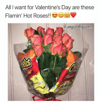Memes, Valentine's Day, and Flowers: All I want for Valentine's Day are these  Flamin' Hot Roses!!  @angelsflorwers  1.69 🙋🏽‍♀️This bouquet's on a new level 💁🏻‍♂️🔥🌹💐😍😋🤗❤️ Rp @angelsflowers_ . . roses vday valentinesday hotcheetos noposwow flowers