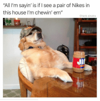 """Nfl, House, and Tank: """"All I'm sayin' is if I see a pair of Nikes in  this house I'm chewin' em""""  @tank.sinatra  Ji 😂"""