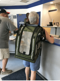Funny, Post Office, and Birds: ALL ITEMS  PICKED  COUNTER  S YOUR PACKAG  SAFE TO MAIL