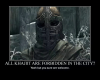 Never actually played as a Khajiit, I should -Namira: ALL KHAJIIT ARE FORBIDDEN IN THE CITY?  Yeah but you sure are welcome. Never actually played as a Khajiit, I should -Namira