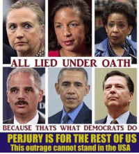 Agree or disagree?: ALL LIED UNDER OATH  BECAUSE THATS WHAT DEMOCRATS DO  PERJURY IS FOR THE REST OF US  This outrage cannot stand in the USA  ,  . Agree or disagree?