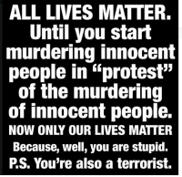 "All Lives Matter, All Lives Matter, and Protest: ALL LIVES MATTER.  Until you start  murdering innocent  people in ""protest""  of the murdering  of innocent people.  Because, well, you are stupid.  PS. You're also a terrorist. Because so many people defend murderers, I guess..."