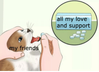 love-and-support: all my love  and support  friends