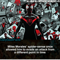 Memes, Spider, and Marvel: ALL-NEW-ALL-DIFFERENTAVENGERS #9  DailyGeekFacts  Miles Morales' spider-sense once  allowed him to evade an attack fromm  a different point in time Hate comments toward Miles Morales incoming 💀 _ milesmorales peterparker spiderman spidergwen spidergirl spiderwoman spiderman2099 spidermannoir intothespiderverse marvel marvelcomics marvelfacts dailygeekfacts