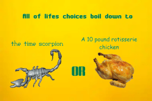 A true dilemma https://t.co/L11CbuG1Gn: All of lifes choices boil down to  A 10 pound rotisserie  the time scorpion  chicken  OR A true dilemma https://t.co/L11CbuG1Gn