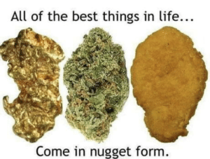 Life, Omg, and Tumblr: All of the best things in life...  Come in nugget form. omg-humor:Kind of Gold