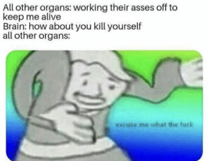 Alive, Memes, and Tumblr: All other organs: working their asses off to  keep me alive  Brain: how about you kill yourself  all other organs:  excuse me what the fuck 30-minute-memes:Just Me?