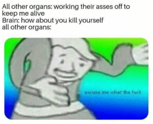 Alive, Dank, and Memes: All other organs: working their asses off to  keep me alive  Brain: how about you kill yourself  all other organs:  excuse me what the fuck meirl by pmrox MORE MEMES