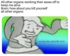 Alive, Dank, and Memes: All other organs: working their asses off to  keep me alive  Brain: how about you kill yourself  all other organs:  excuse me what the fuck Meirl by MussoIiniTorteIIini MORE MEMES