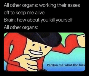 meirl: All other organs: working their asses  off to keep me alive  Brain: how about you kill yourself  All other organs:  Pardon me what the fuck meirl
