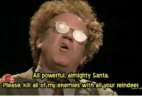 ~Junky Cat: All powerful, almighty Santa.  Please, kill all of my enemies with all your reindeer. ~Junky Cat
