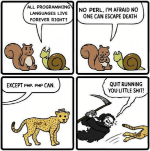 Keep running you little shit: ALL PROGRAMMING  NO PERL, I'M AFRAID NO  ONE CAN ESCAPE DEATH  LANGUAGES LIVE  FOREVER RIGHT?  QUIT RUNNING  YOU LITTLE SHIT!  EXCEPT PHP. PHP CAN  SDHP Keep running you little shit